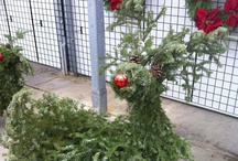 Christmas Cheer Outdoors / Let the beauty of the holidays begin from the moment your guests arrive.