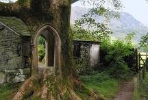Doors/Passageways / Doors, Passageways, Paths, Arches, Tunnels, etc.