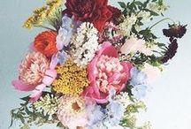 Blumenliebe / Auf dem Blog Board Blumenliebe von Zu Tisch bei Blumenthals findest du Inspiration für Blumendekoration und Sträuße für deinen gedeckten Tisch