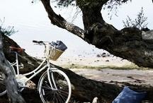 Draußen / Natur, Sonne, Meer & Wind - ein Moodboard
