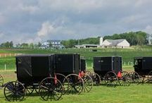 Other Amish Photos / by Sarah Price, Author