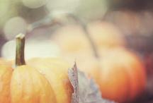 Herbst / Ideen & Inspiration für den Herbst