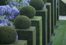 design..home landscape / outdoor design.. / by CJ Brown