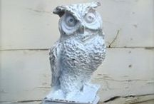 Owl Love / by all about the cozy