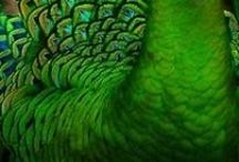 Colour Inspirations / by Melinda Maxfield
