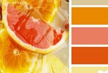 Jennifer Sampou's Studio Stash - Citrus Splash / Design inspiration for Jennifer Sampou's upcoming fabric line, Studio Stash.