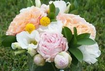 Summer Wedding Flowers / Flowers and other summer wedding inspiration! Check out our favorite flower picks: http://www.flowermuse.com/wedding-flowers/summer-wedding-flowers.html / by Flower Muse