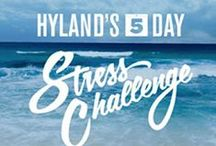 Hyland's Stress Challenge / Do you have stress in your life? Hyland's Homeopathy wants to help! / by Hyland's, Inc.