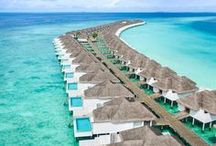 Luxury Hotels / Find the best luxurious hotel, or vacation rental for your next getaway