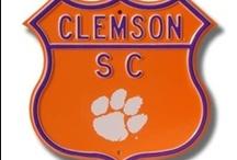 CLEMSON TIGERS!!! / by Lynn Esposito