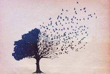 I Love Birds / by Kelly Gore