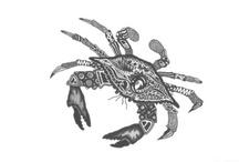 Crabs Eer