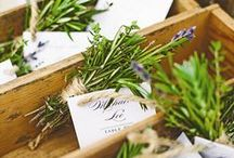 Sit Right Here / Escort & Seating cards, charts, etc. / by The Wedding Factor