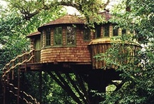 Tree houses! / by Dawn Nelson Woytassek