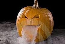 Halloween / by Angela Schmitt