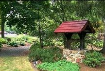 Outdoor Projects & Fun / by Bill and Stephanie Norman