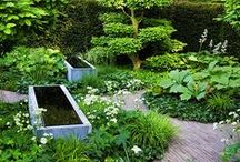 Trädgård / Garden / This is my inspiration for the gardens that I design and how I want my own garden to be.