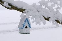 snow pretty / by Janet Ryan