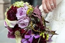 Purple Wedding Theme / Purple has a royal feel to it and is a colorful choice for a wedding.