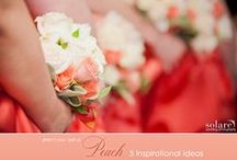 Wedding Colors: Peach / Love this pinky-peach color for a wedding! Beautiful anytime of the year.
