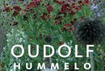 Piet Oudolf design / Garden ace Piet Oudolfs design in my hometown and other places