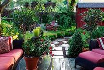 Brittles back yard / by Denise Patterson - Rowena