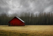 Barns and Bridges / by Paula Hutchinson