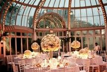Future Wedding. / My wedding!! 10/10/15 / by Lila Hunt