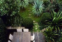 gardens + outdoor