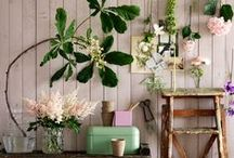 A Space with Greenery / by the Home Ground