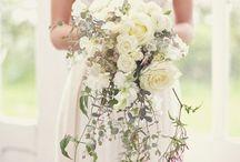 Wedding  / by Melissa Holmberg