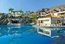 Palm Canyon Resort / by ResorTime.com