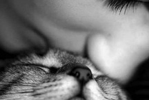 Animals <3 / by Ellen Simons
