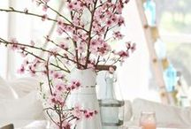Dreaming of Spring / If springtime is on your mind, these ideas will help you freshen up your home décor!