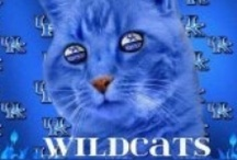 Kentucky!! / I Bleed Blue (and sometimes Tartan -- but always in Kentucky Blue colors) / by Sheri Caldwell