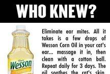 Helpful info / by Sharon Franz