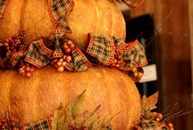 Fall Decorations / I love to decorate for Fall, and am always looking for new ideas~~  / by Kevin Cavanaugh-Tucker