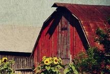 Barns & Buildings / by Joyce Ann Smith Lynch