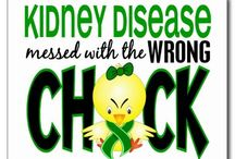 Kidney Disease~Living Donor / Awareness