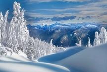 Winter / by Kelleon