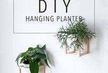 DIY & Craft