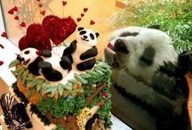 Love, like e cuorizìni