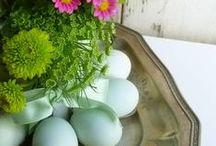 Rebirth / Lent into Easter / by Elena Christensen