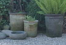 The Garden - Pots / by Aunt Viv