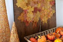 Autumn / by Natalie Bujakowski
