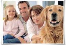 Προϊόντα για το Σπίτι και τα Κατοικίδια από Αλόη Βέρα | αλοη.gr | Κατάστημα Αλόη Βέρα / Αγοράστε online προϊόντα για το σπίτι και τα κατοικίδια από Αλόη Βέρα από το Κατάστημα Αλόη Βέρα | αλοη.gr | Forever Living Products e-shop. Πληρώστε με αντικαταβολή.