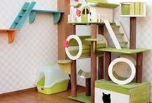 Stuff my cats would love / by Deby Coles