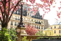 Paris / Next on my To-Visit list. One day!