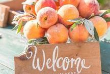 Colors of 2015 - June {Peach/Coral} / Color for June 2015 in our photography group