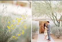 Engagements | Park Road Photography / by Park Road Photography